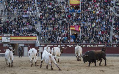 Madrid: 7ª de San Isidro – ¡Fuera del palco!