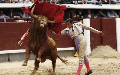 Madrid: 15ª de San Isidro – Héroe o artista