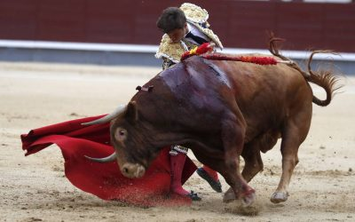 Madrid: 17ª de San Isidro – Licenciado, hermano de Orgullito
