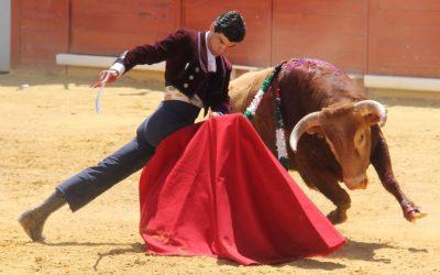 La Algaba: Pablo Aguado sobresale en un interesante festival