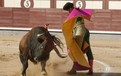Madrid: 32ª de San Isidro – La corrida (Miura) del deshonor