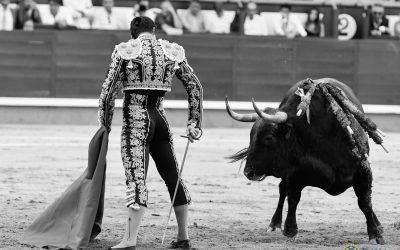 Oreja para Daniel Luque en Madrid