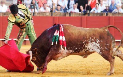 Sevilla: Novillada de lujo de Rocío de la Cámara