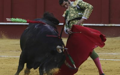 Morante de la Puebla se retira de los ruedos