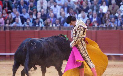 El Cid tropieza con un pésimo ganado de Dosgutiérrez en Manizales