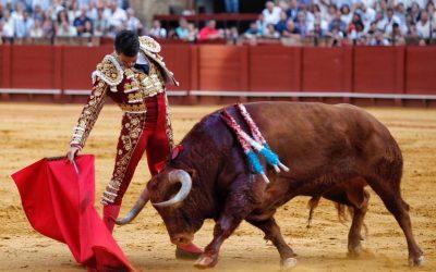 Sevilla: 3ª de San Miguel – La elegancia de Manzanares conquista a la Maestranza