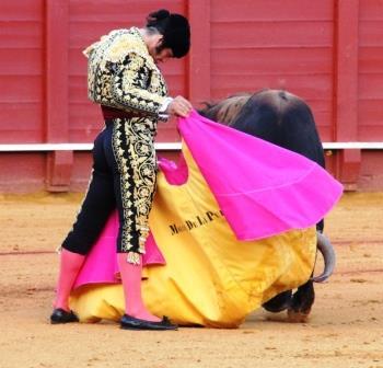 Corrida de toros – Morante de la Puebla, Diego Urdiales y López Simón