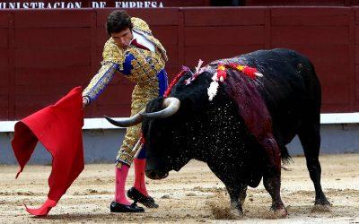 Madrid: 25ª de San Isidro – Cuadri, una muy seria decepción
