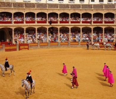 El público de toros y la pasión