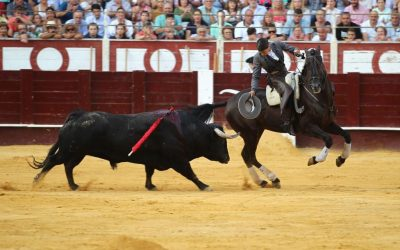 Málaga: 8ª de Feria – Orejas para Pablo Hermoso y Lea Vicens